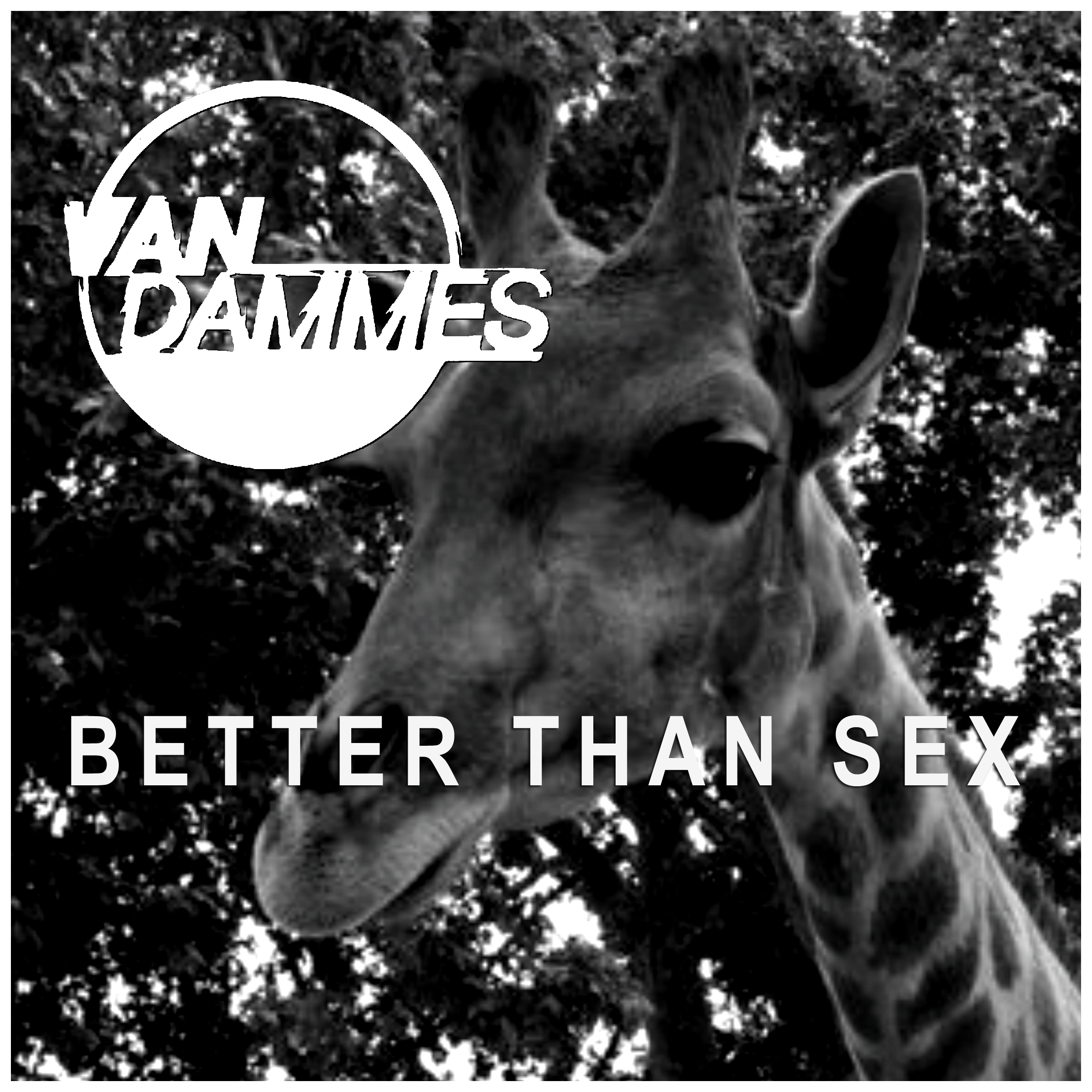 Van Dammes Better Than Sex Cover copy