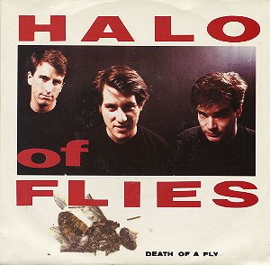 halo of flies single cover